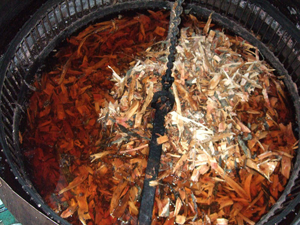 奄美・テーチ木-車輪梅-を煮込んでいるところ-テーチ木で赤茶色に染めて泥で媒染する